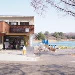 昭和記念公園のランチにおすすめ!犬もOKのレイクサイドレストランを紹介!メニューや混雑時間帯も!